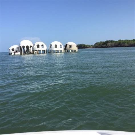 marco island boat rental reviews sea shell boat tours marco island fl top tips before