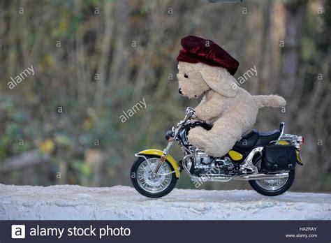 Motorrad Fahren Mit Hund by Motorcycle Stockfotos Motorcycle Bilder Alamy