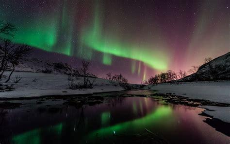 Northern Lights by Borealis Northern Lights Green Snow