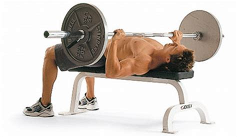 touching chest on bench press mastering the classics the chest press miami muscle