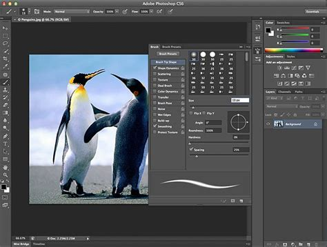 photoshop cs6 download full version windows 8 how to download photoshop cs6 for free full version