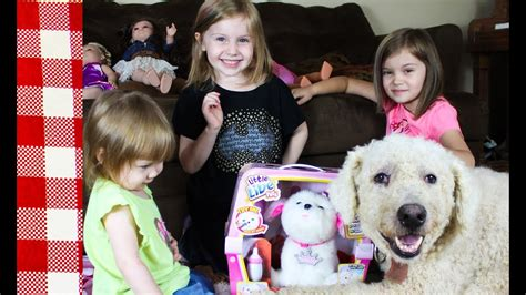 live pets my puppy playset tiara live pets my puppy playset tiara review with picnic