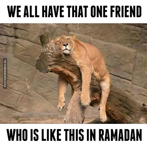 Ramadan Memes - best funny ramadan memes quotes wishes greetings for