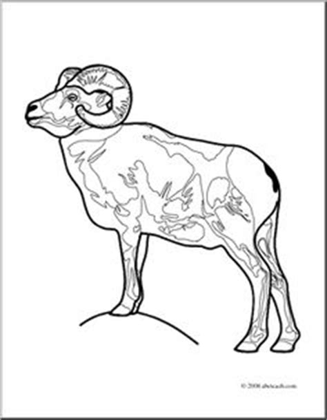 bighorn sheep coloring pages 1000 images about b is for bighorn sheep desert dwellers