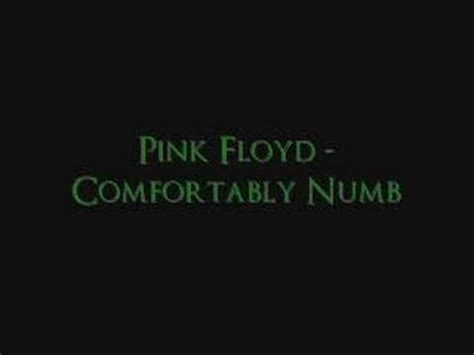 Play Comfortably Numb By Pink Floyd by Pink Floyd Comfortably Numb