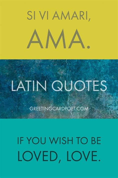 latin quotes sayings  phrases inspirational quotes  latin quotes latin quotes