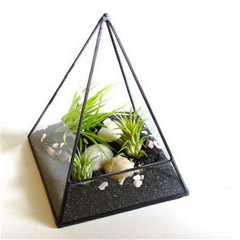 Gardener S Supply Company Terrarium Kit Air Plant Terrarium Glass Pyramid Terrarium Planter