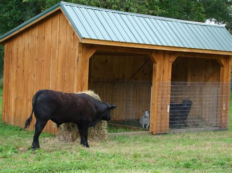 Animals That Shed by Rent To Own Storage Buildings Sheds Barns Lawn Furniture Playgrounds More Mountain Barn
