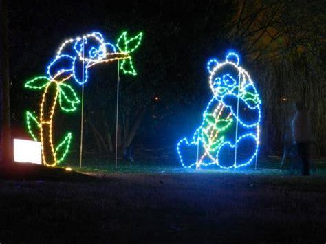 zoo lights washington dc light up with a trip to the zoo petslady