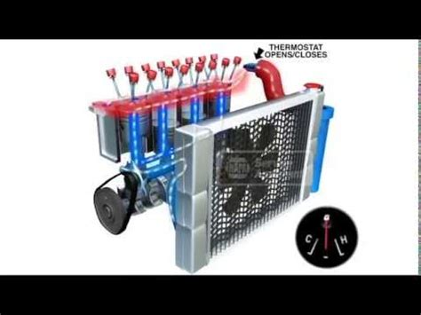 engine cooling system   works animation auto pro tampa fl youtube