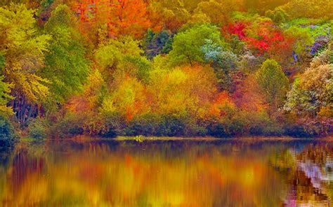 nature wallpaper hd colorful nature 37 colorful autumn 01december2014monday