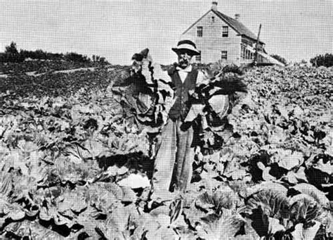 manitoba history  greening   west horticulture