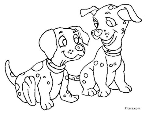 printable coloring pages domestic animals domestic animals coloring pages pitara kids network