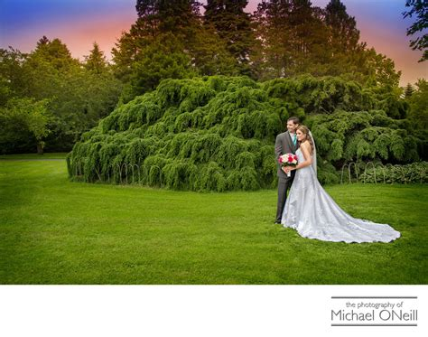 Wedding Album Design New York by Unique Wedding Album Designs Island Nyc Li Weddings