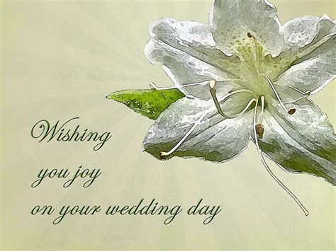 Wedding Wishes wedding wishes card white azalea photograph by nature