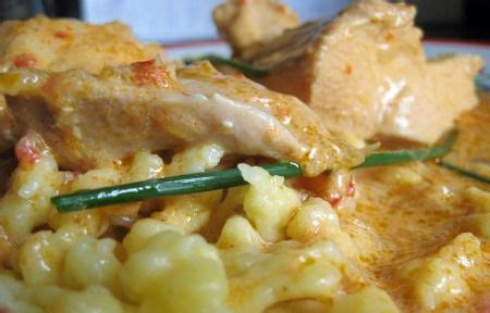 chicken paprikas books 1000 ideas about hungarian cuisine on