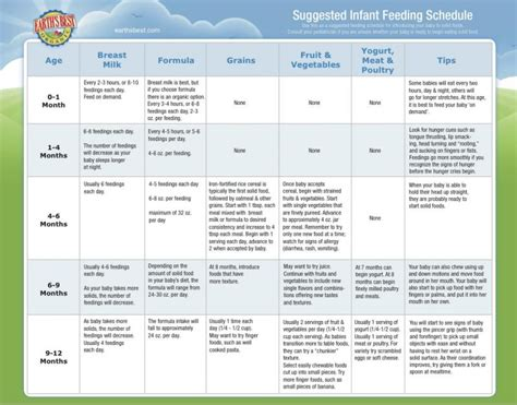 feeding schedule infant feeding chart images