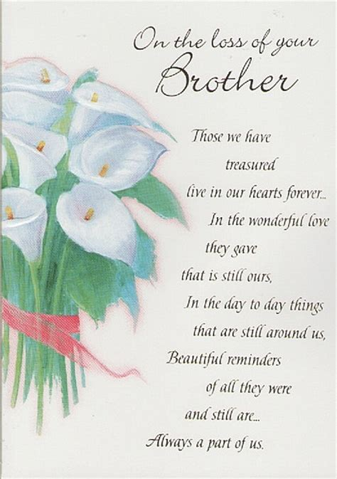 comforting words for death of a brother sympathy quotes for loss of brother image quotes at