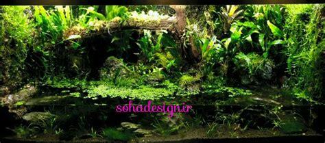 sohadesign ir تراریوم گیاهان سبز ساخت تراریوم مهندس آقاخانی۰۹۱۲۳۳۴۹۴۲۰