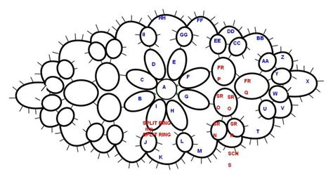 tatting diagrams diagram by eborall with order of working oval pattern