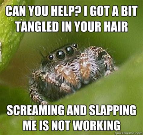 Memes About Spiders - image 325878 misunderstood spider know your meme