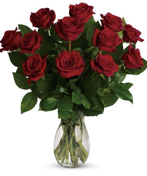 One Dozen Roses by 1 Dozen Premium Roses White Plains Yonkers New York