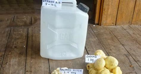 cara membuat zpt organik sendiri membuat pestisida organik sendiri budidayaku