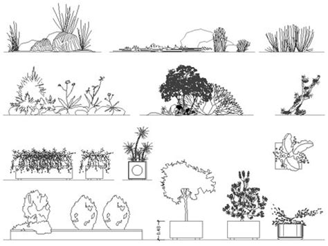 vaso fiori dwg fioriere e aiuole disegni fioriere dwg