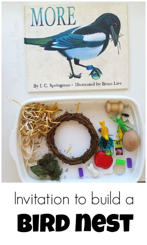 learn to create themes by building 5 projects master the fundamentals of theme development and create attractive themes from scratch books 17 best images about preschool birds on birds