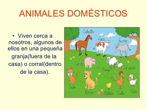 imagenes de animales salvajes y domesticos diferencia entre animales dom 233 sticos y salvajes