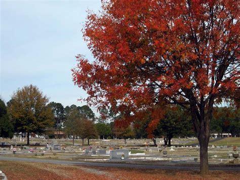 Columbus Ga Records Porterdale Cemetery Columbus Ga Burial Records