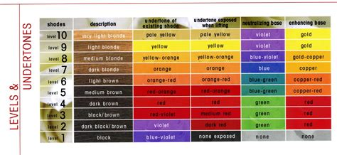 levels of hair color the level system hair levels and undertones cosmetology