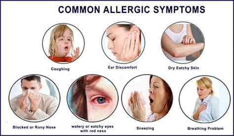 symptoms of allergies 6 best homeopathic medicines for allergic rhinitis treatment