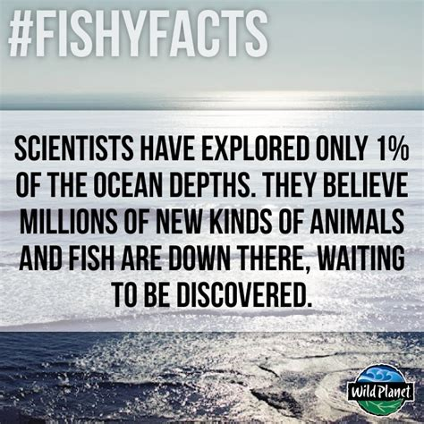 76 best images about fishy facts on facts fish and sharks