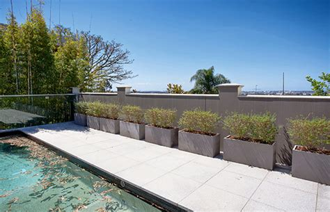 planters in poolside landscaping iota venice concrete