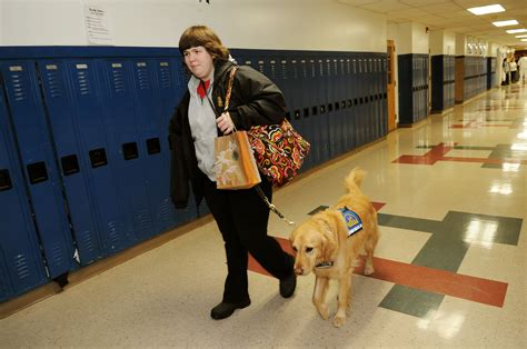 school for service dogs canine companions for independence providing assistance dogs for those in need