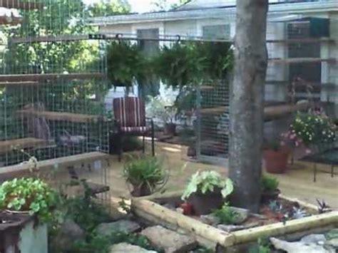 backyard cat cat habitat for the backyard youtube