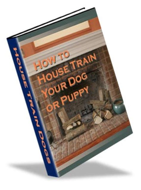house train your dog house training help ambassadors for dogs