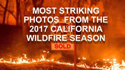 most striking photos from the 2017 california season