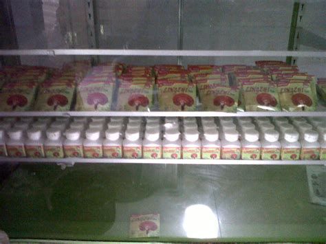 Bibit Jamur Tiram Yogyakarta jual lingzhi di jogja pebisnis jamur jogja