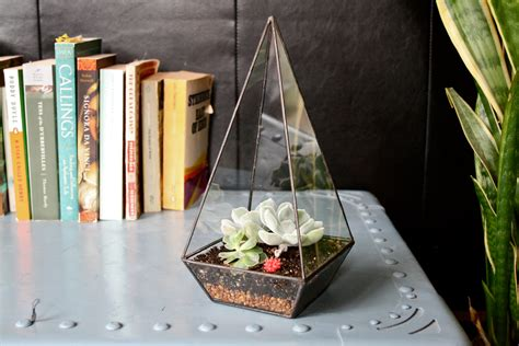 Office Desk Terrarium Obelisk Terrarium Office Desk Plants And Planters