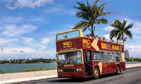boat ride miami groupon miami bus and everglades tours big bus tours groupon