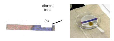 Kertas Lakmus Biru matari penjelasan tentang larutan asam dan basa biologi