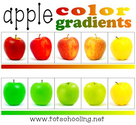 apple colors 5 free apple themed printables totschooling toddler