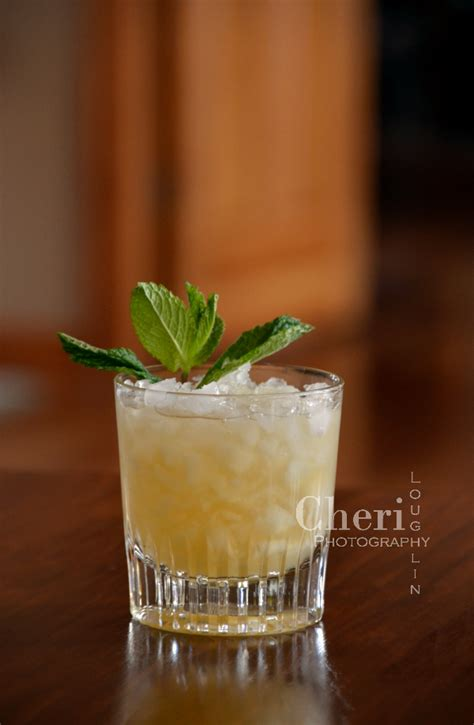 whiskey smash daniel s no 7 tennessee whiskey smash review the intoxicologist