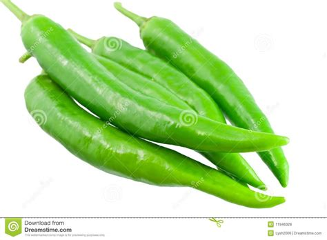 wallpaper of green chillies chilli peppers stock photo image of life green