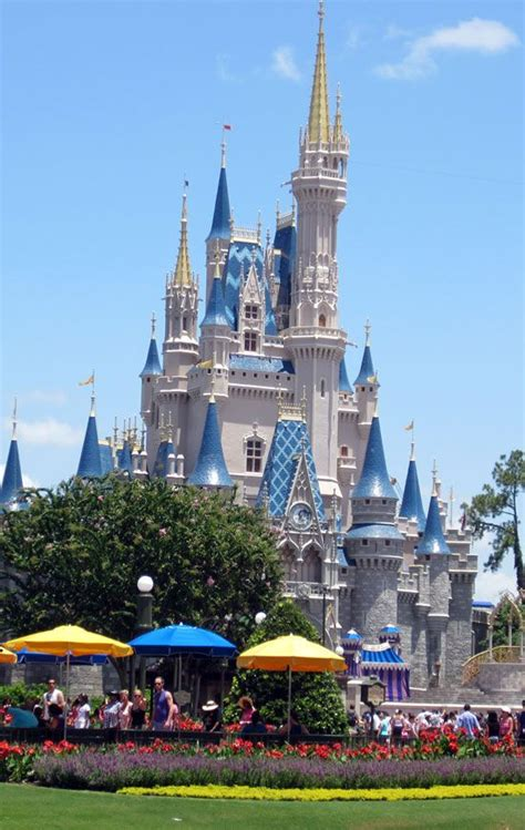 Gift Card Disney World Florida - 709 best roller coasters thrill rides themeparks images on pinterest roller coasters