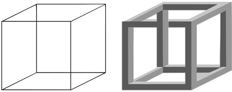 Cube Shape Outline by Clipart Necker Cube And Impossible Cube