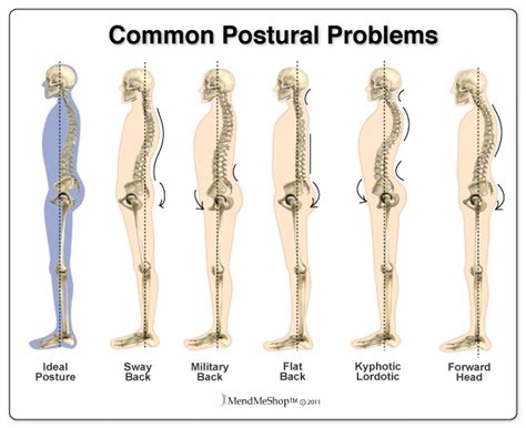 exercises for posture the stand program for better health through posture books how to improve posture 4 back exercises bodi