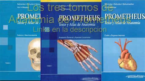libro pdf anatomia descargar libros de texto y atlas de anatomia de prometheus en pdf youtube